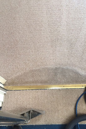 Carpet Cleaning Plymouth Carpet Cleaners Plymouth